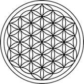 sacred geometry sphere